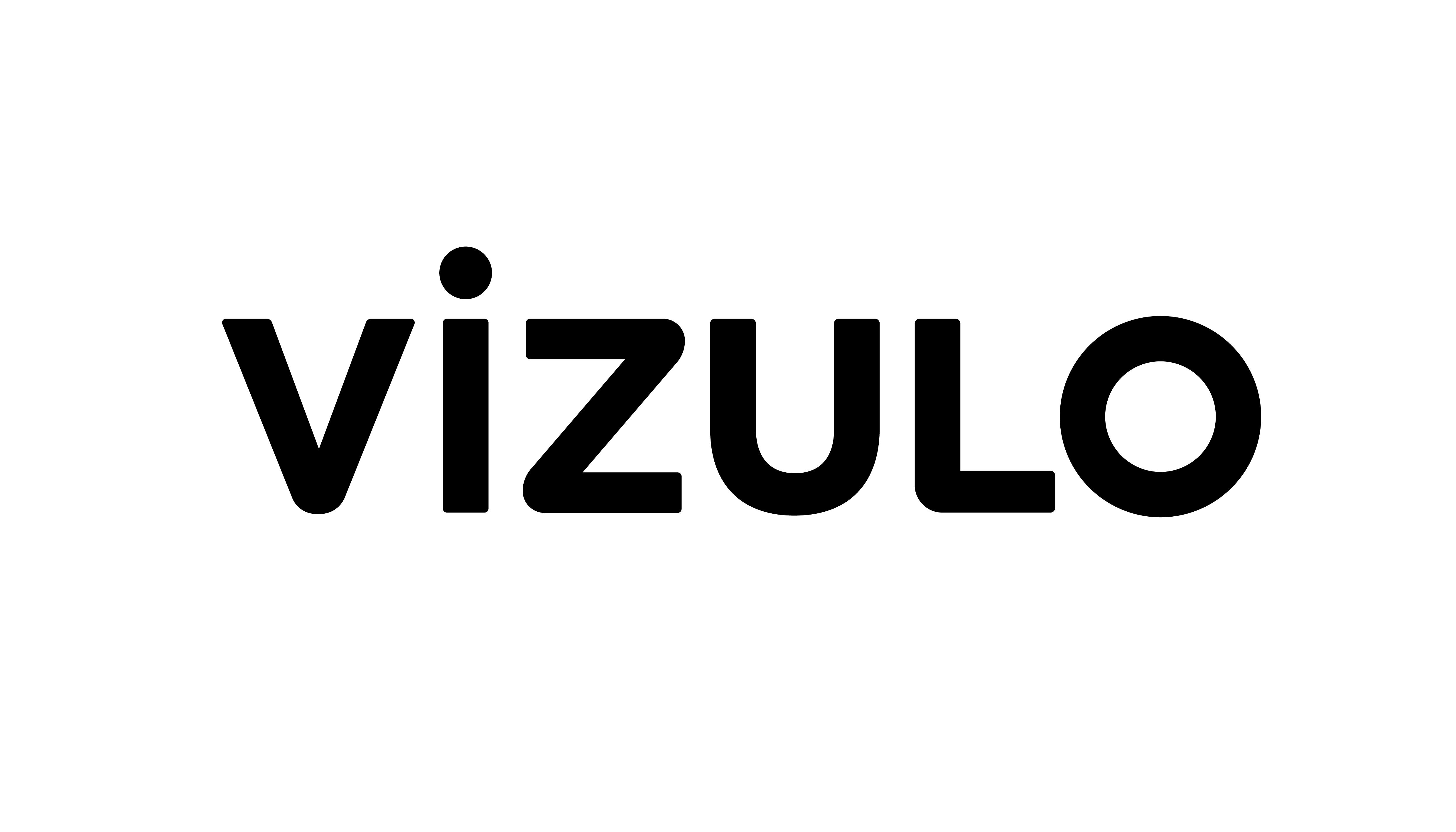 VIZULO_logo_MELNS